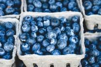 blue-1326154_1920